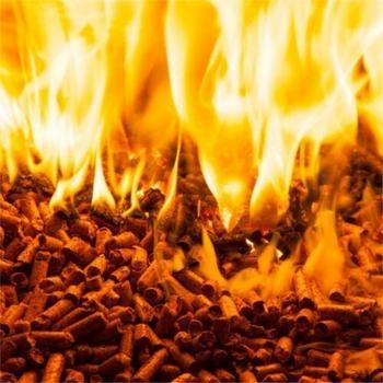 biomass household appliances